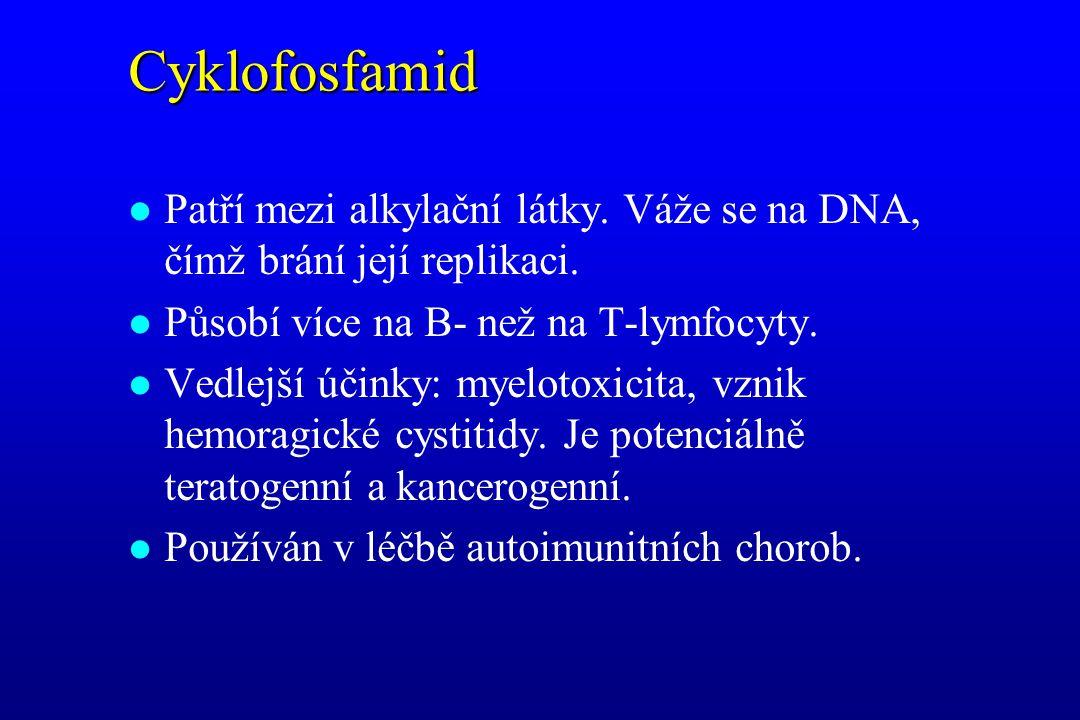 Cyklofosfamid l Patří mezi alkylační látky. Váže se na DNA, čímž brání její replikaci. l Působí více na B- než na T-lymfocyty. l Vedlejší účinky: myel