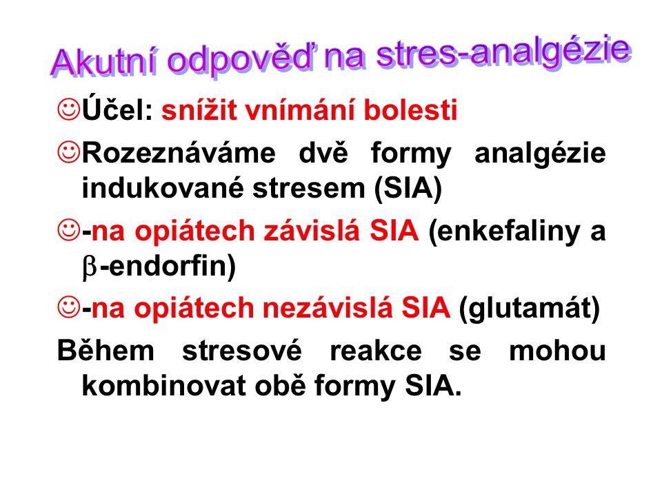 Účel: snížit vnímání bolesti Rozeznáváme dvě formy analgézie indukované stresem (SIA) -na opiátech závislá SIA (enkefaliny a  -endorfin) -na opiátech nezávislá SIA (glutamát) Během stresové reakce se mohou kombinovat obě formy SIA.