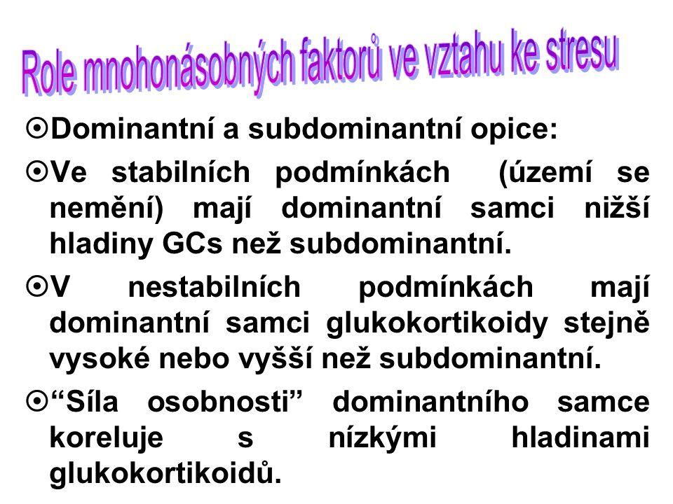 ¤Dominantní a subdominantní opice: ¤Ve stabilních podmínkách (území se nemění) mají dominantní samci nižší hladiny GCs než subdominantní.