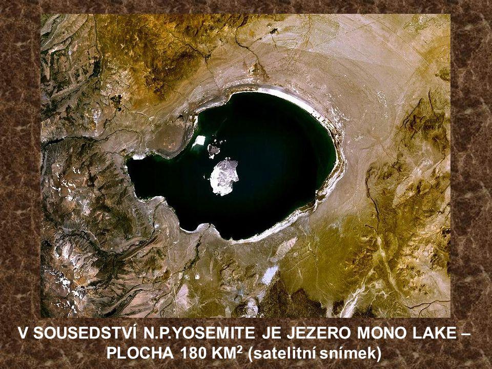 JEZERO TIOGA LAKE