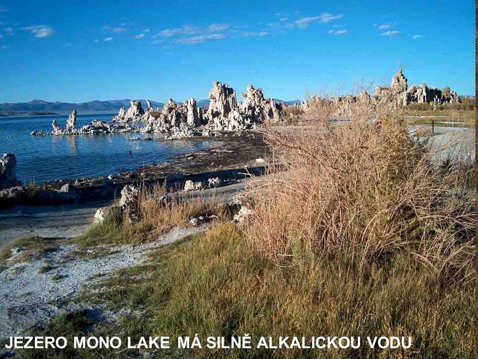 V SOUSEDSTVÍ N.P.YOSEMITE JE JEZERO MONO LAKE – PLOCHA 180 KM 2 (satelitní snímek)