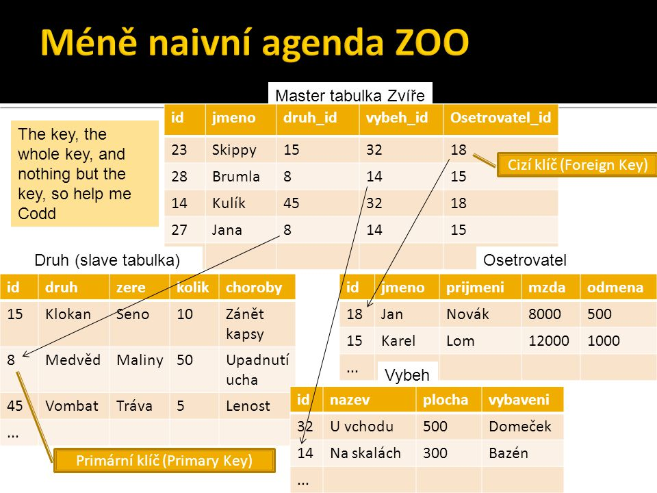 Master tabulka Zvíře idjmenodruh_idvybeh_idOsetrovatel_id 23Skippy153218 28Brumla81415 14Kulík453218 27Jana81415...