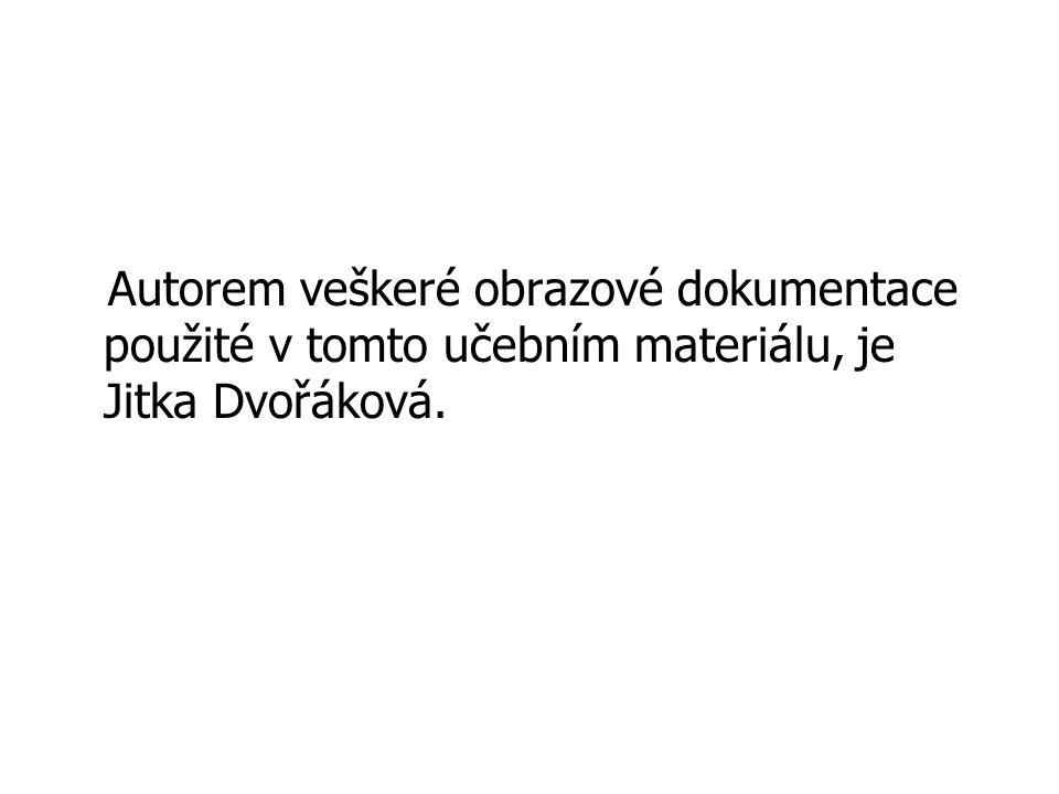 Autorem veškeré obrazové dokumentace použité v tomto učebním materiálu, je Jitka Dvořáková.
