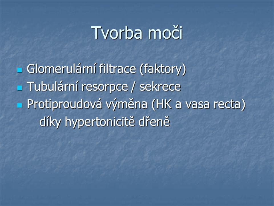 Tvorba moči Glomerulární filtrace (faktory) Glomerulární filtrace (faktory) Tubulární resorpce / sekrece Tubulární resorpce / sekrece Protiproudová vý