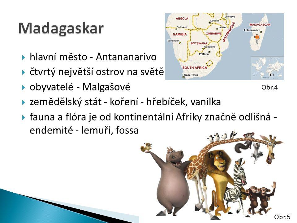  hlavní město - Antananarivo  čtvrtý největší ostrov na světě  obyvatelé - Malgašové  zemědělský stát - koření - hřebíček, vanilka  fauna a flóra