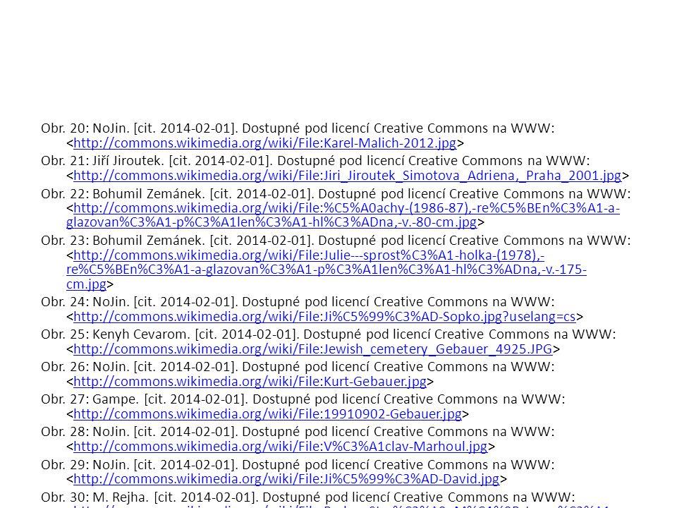 Obr. 20: NoJin. [cit. 2014-02-01]. Dostupné pod licencí Creative Commons na WWW: http://commons.wikimedia.org/wiki/File:Karel-Malich-2012.jpg Obr. 21: