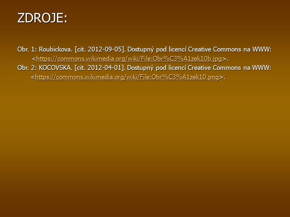 ZDROJE: Obr. 1: Roubickova. [cit. 2012-09-05].