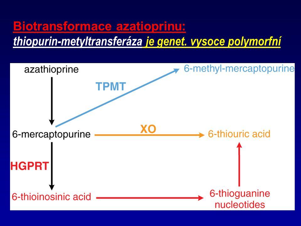 Biotransformace azatioprinu: thiopurin-metyltransferáza je genet. vysoce polymorfní