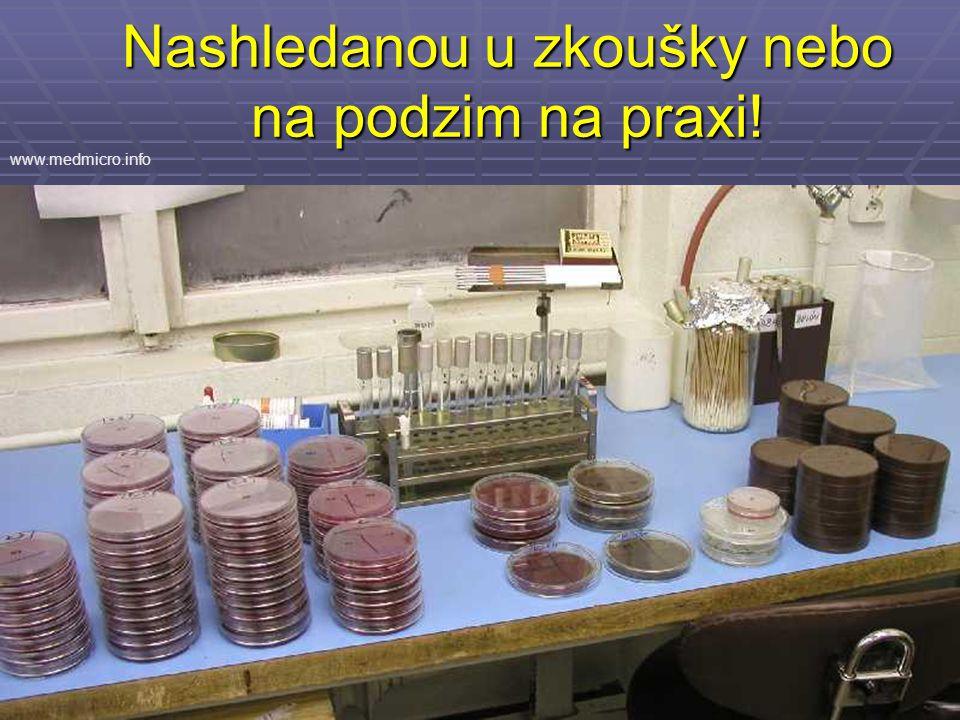 Nashledanou u zkoušky nebo na podzim na praxi! www.medmicro.info