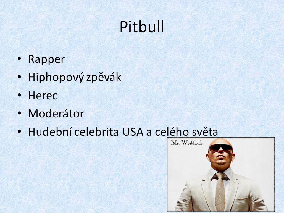 Rapper Hiphopový zpěvák Herec Moderátor Hudební celebrita USA a celého světa