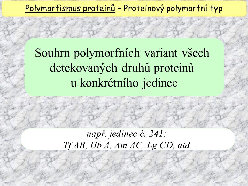 Souhrn polymorfních variant všech detekovaných druhů proteinů u konkrétního jedince např. jedinec č. 241: Tf AB, Hb A, Am AC, Lg CD, atd. Polymorfismu