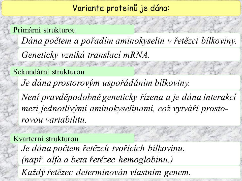 Geneticky vzniká translací mRNA. Varianta proteinů je dána: Dána počtem a pořadím aminokyselin v řetězci bílkoviny. Primární strukturou Je dána prosto