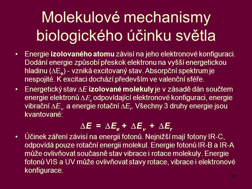 20 Molekulové mechanismy biologického účinku světla Energie izolovaného atomu závisí na jeho elektronové konfiguraci. Dodání energie způsobí přeskok e