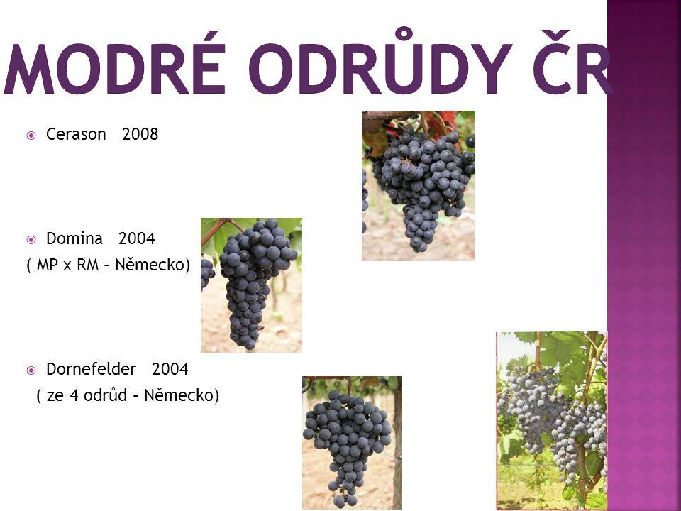  Cerason 2008  Domina 2004 ( MP x RM – Německo)  Dornefelder 2004 ( ze 4 odrůd – Německo)