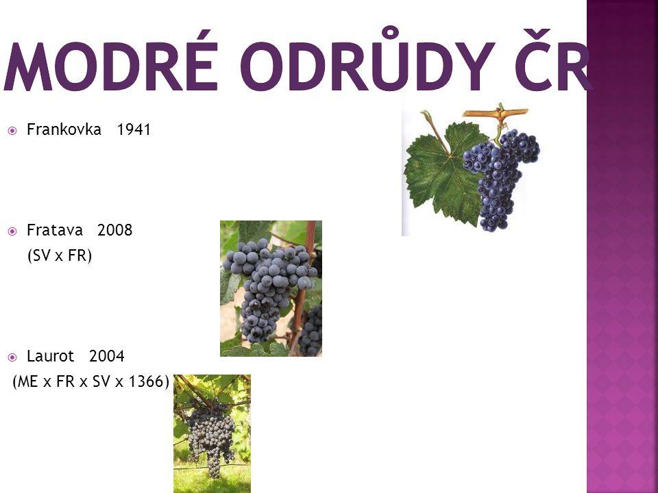  Frankovka 1941  Fratava 2008 (SV x FR)  Laurot 2004 (ME x FR x SV x 1366)