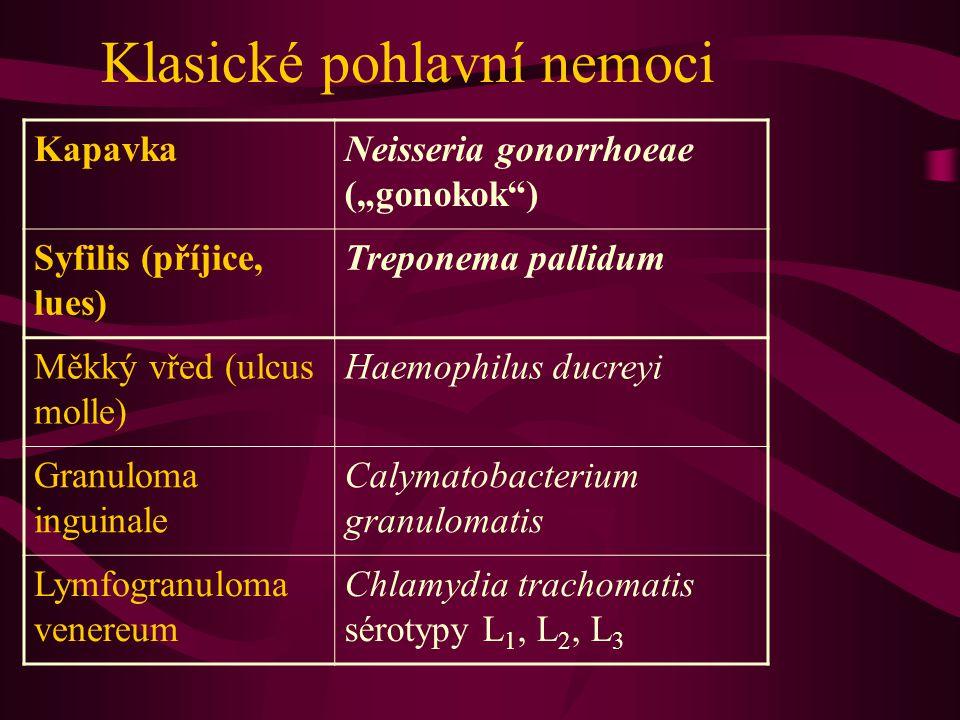 """Klasické pohlavní nemoci KapavkaNeisseria gonorrhoeae (""""gonokok"""") Syfilis (příjice, lues) Treponema pallidum Měkký vřed (ulcus molle) Haemophilus ducr"""