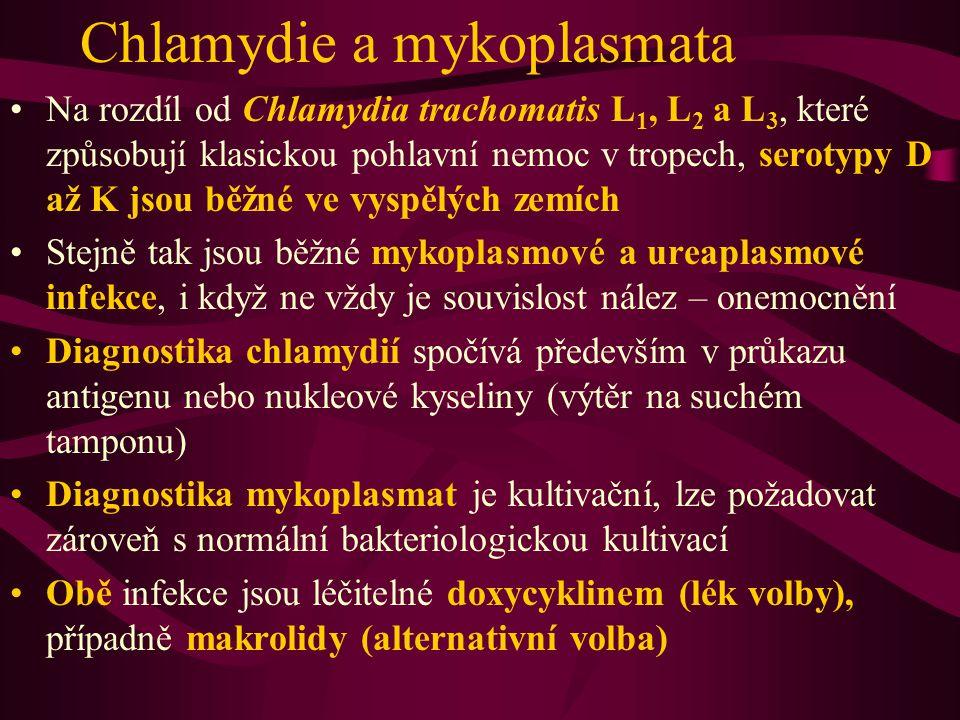 Chlamydie a mykoplasmata Na rozdíl od Chlamydia trachomatis L 1, L 2 a L 3, které způsobují klasickou pohlavní nemoc v.tropech, serotypy D až K jsou b