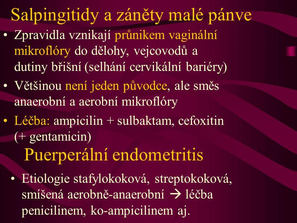 Salpingitidy a záněty malé pánve Zpravidla vznikají průnikem vaginální mikroflóry do dělohy, vejcovodů a dutiny břišní (selhání cervikální bariéry) Vě