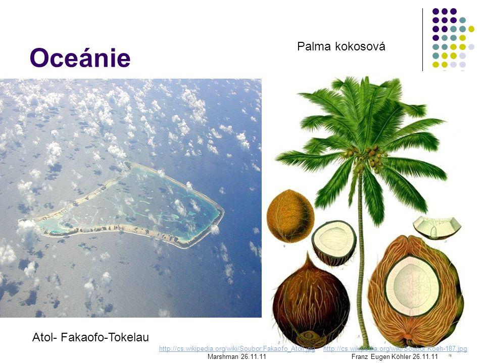 Oceánie Palma kokosová Atol- Fakaofo-Tokelau http://cs.wikipedia.org/wiki/Soubor:Koeh-187.jpg Franz Eugen Köhler 26.11.11 http://cs.wikipedia.org/wiki/Soubor:Fakaofo_Atoll.jpg Marshman 26.11.11