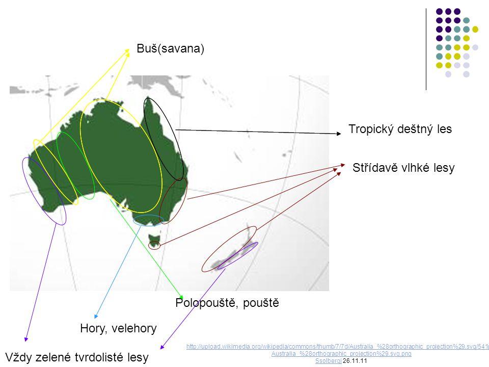 Tropický deštný les Střídavě vlhké lesy Buš(savana) Polopouště, pouště Hory, velehory Vždy zelené tvrdolisté lesy http://upload.wikimedia.org/wikipedia/commons/thumb/7/7d/Australia_%28orthographic_projection%29.svg/541px- Australia_%28orthographic_projection%29.svg.png SsolbergjSsolbergj 26.11.11