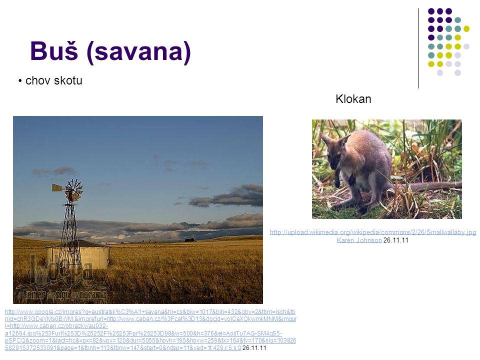 Buš (savana) chov skotu http://upload.wikimedia.org/wikipedia/commons/2/26/Smallwallaby.jpg Karen JohnsonKaren Johnson 26.11.11 Klokan http://www.google.cz/imgres?q=australsk%C3%A1+savana&hl=cs&biw=1017&bih=432&gbv=2&tbm=isch&tb nid=chR3GDeYMs0BWM:&imgrefurl=http://www.caban.cz/%3Fcat%3D13&docid=voICeXOkwmkMNM&imgur l=http://www.caban.cz/obrazky/au032- a12694.jpg%253Furl%253D%25252F%25253Fpr%25253D98&w=500&h=376&ei=AojjTu7AG-SM4gS5- pSPCQ&zoom=1&iact=hc&vpx=82&vpy=120&dur=5055&hovh=195&hovw=259&tx=164&ty=170&sig=103826 582915372533091&page=1&tbnh=113&tbnw=147&start=0&ndsp=11&ved=1t:429,r:5,s:0http://www.google.cz/imgres?q=australsk%C3%A1+savana&hl=cs&biw=1017&bih=432&gbv=2&tbm=isch&tb nid=chR3GDeYMs0BWM:&imgrefurl=http://www.caban.cz/%3Fcat%3D13&docid=voICeXOkwmkMNM&imgur l=http://www.caban.cz/obrazky/au032- a12694.jpg%253Furl%253D%25252F%25253Fpr%25253D98&w=500&h=376&ei=AojjTu7AG-SM4gS5- pSPCQ&zoom=1&iact=hc&vpx=82&vpy=120&dur=5055&hovh=195&hovw=259&tx=164&ty=170&sig=103826 582915372533091&page=1&tbnh=113&tbnw=147&start=0&ndsp=11&ved=1t:429,r:5,s:0 26.11.11