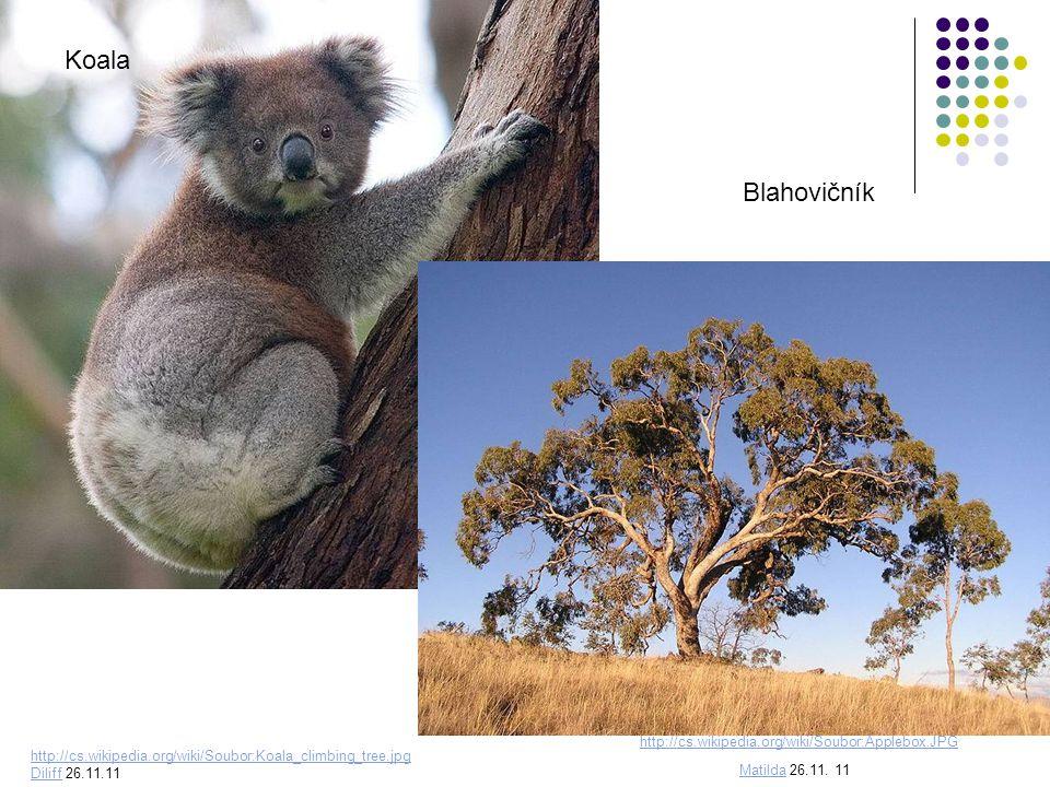 Polopouště, pouště Bandikut králikovitý Pes dingo http://upload.wikimedia.org/wikipedia/comm ons/thumb/e/ef/Dingo_Australia_Zoo_QLD.j pg/777px-Dingo_Australia_Zoo_QLD.jpg Lc95Lc95 26.11.11 http://upload.wikimedia.org/wikipedia/commons/thumb/0/0c/Easter_Bilby.jpg/800px-Easter_Bilby.jpg stephentrepreneurstephentrepreneur from Adelaide, Australia 26.11.11 zabírají největší plochu území