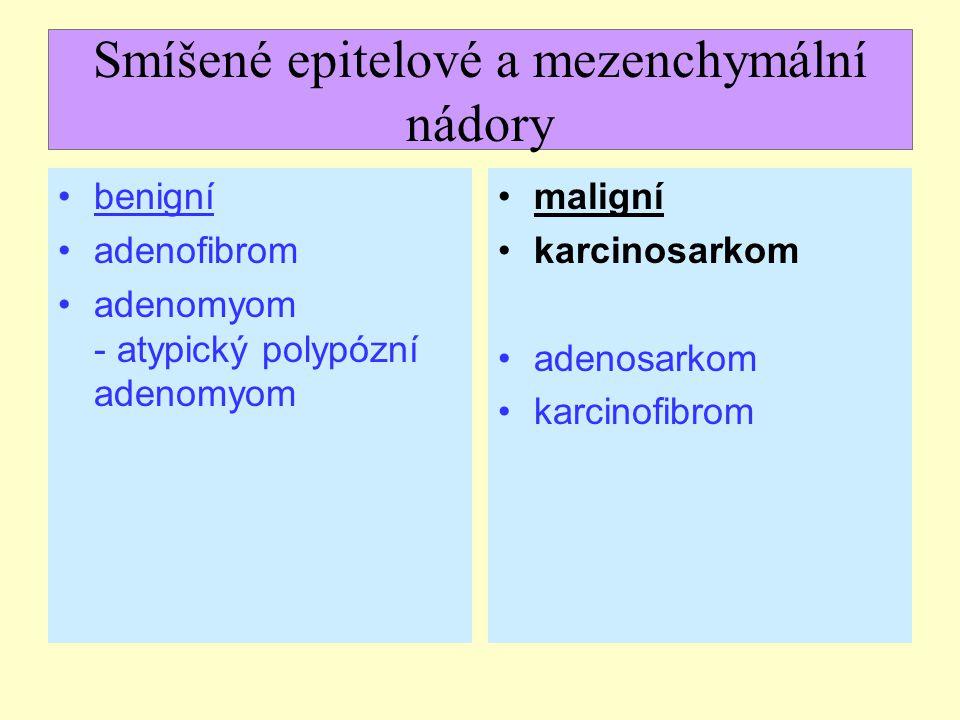Smíšené epitelové a mezenchymální nádory benigní adenofibrom adenomyom - atypický polypózní adenomyom maligní karcinosarkom adenosarkom karcinofibrom