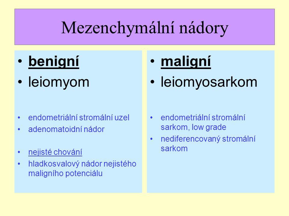 Mezenchymální nádory benigní leiomyom endometriální stromální uzel adenomatoidní nádor nejisté chování hladkosvalový nádor nejistého maligního potenci