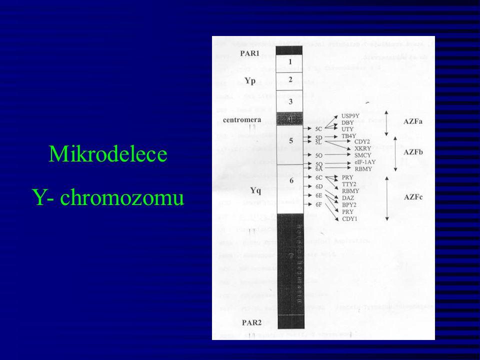 Mikrodelece Y- chromozomu