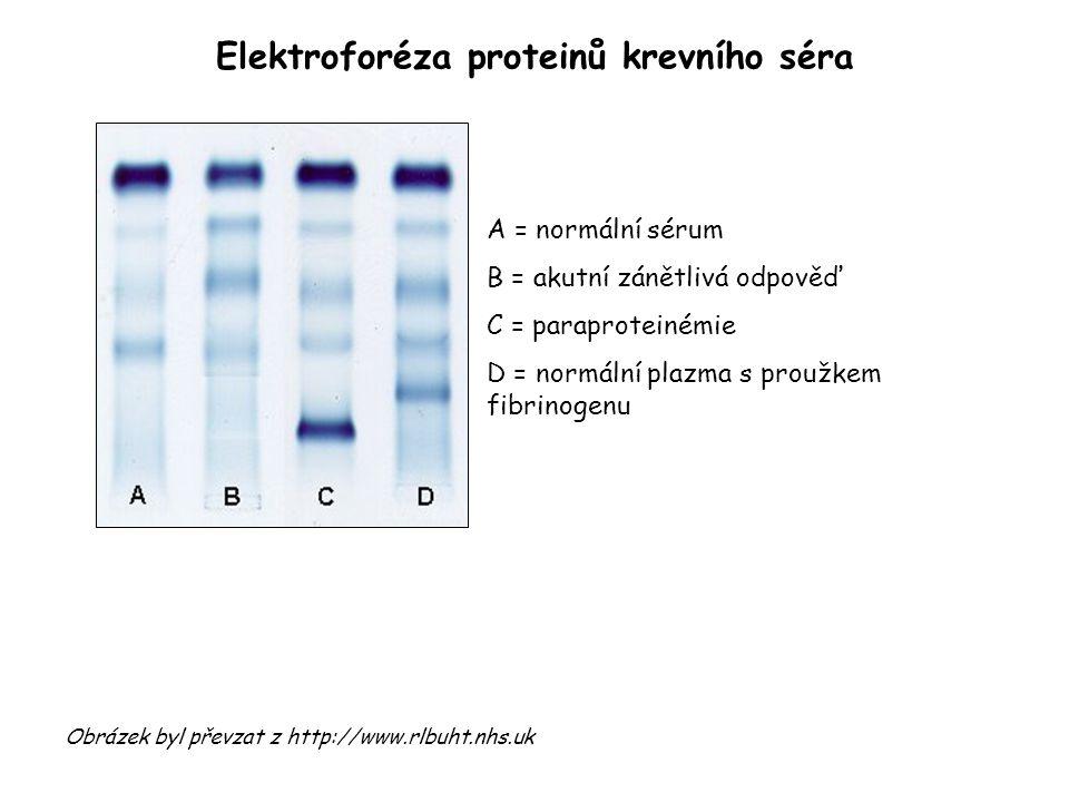 Elektroforéza proteinů krevního séra Obrázek byl převzat z http://www.rlbuht.nhs.uk A = normální sérum B = akutní zánětlivá odpověď C = paraproteinémie D = normální plazma s proužkem fibrinogenu