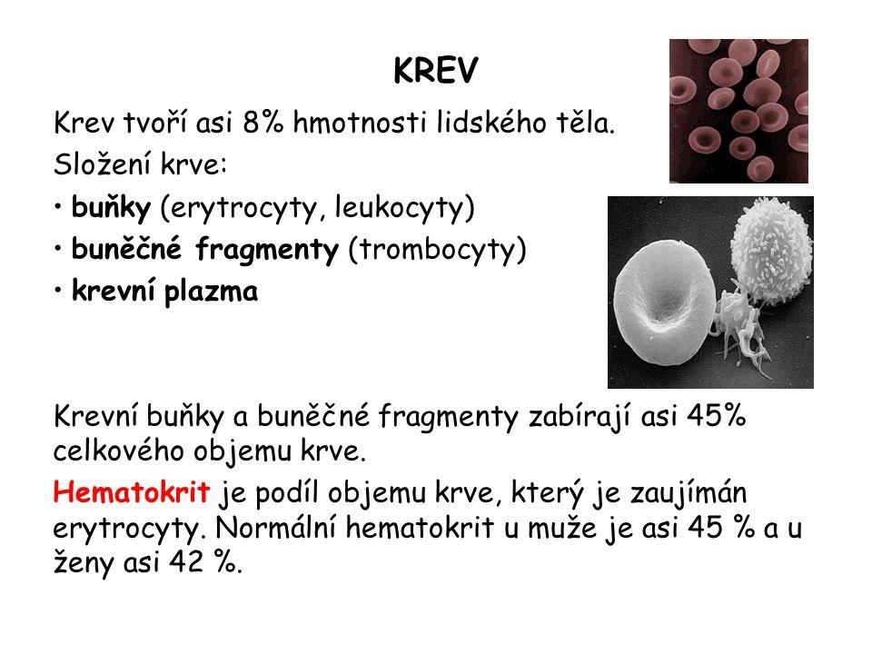 KREV Krev tvoří asi 8% hmotnosti lidského těla.