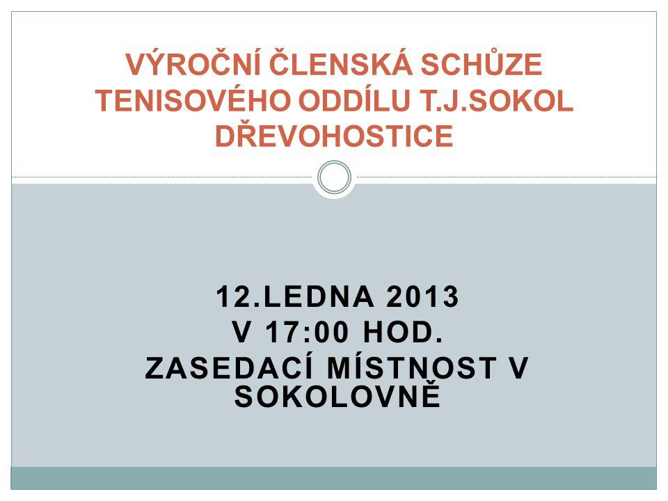 12.LEDNA 2013 V 17:00 HOD.