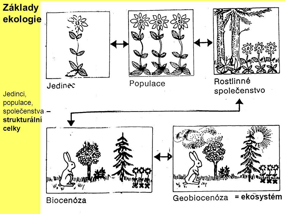 = ekosystém Základy ekologie Jedinci, populace, společenstva – strukturální celky