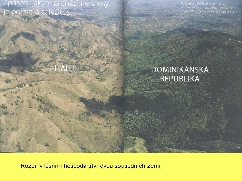 Rozdíl v lesním hospodářství dvou sousedních zemí