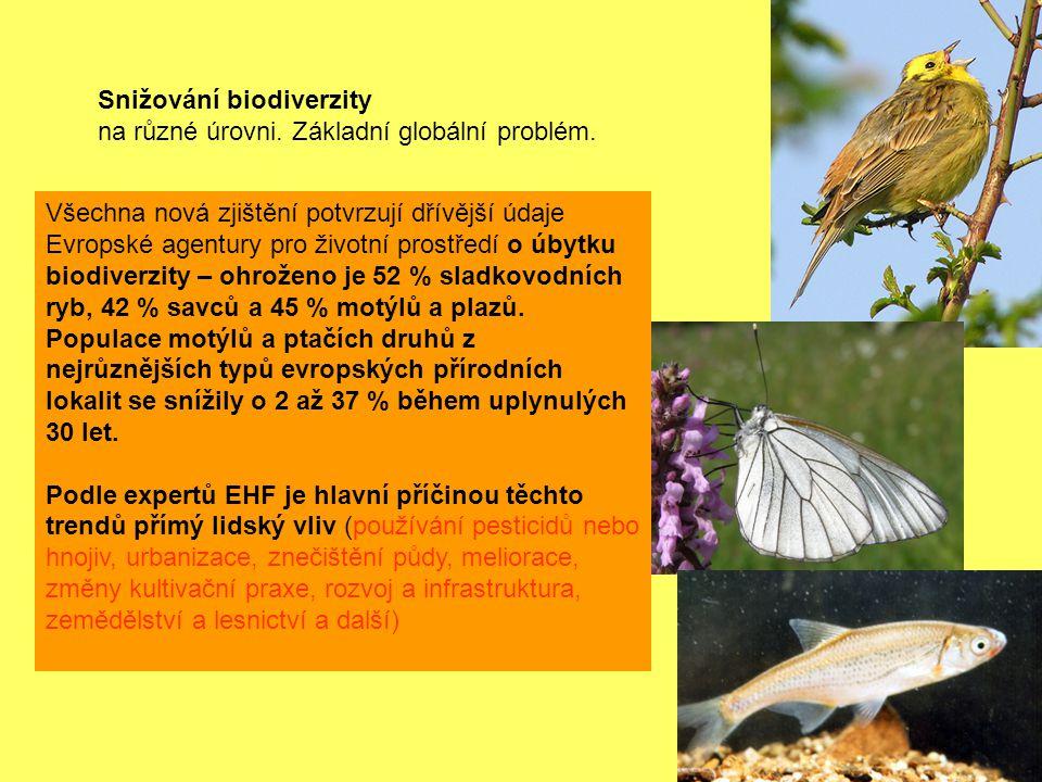 Snižování biodiverzity na různé úrovni.Základní globální problém.