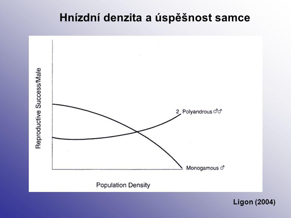 Hnízdní denzita a úspěšnost samce Ligon (2004)