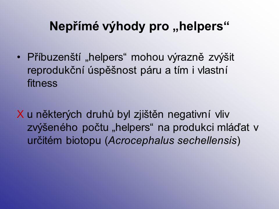 """Nepřímé výhody pro """"helpers"""" Příbuzenští """"helpers"""" mohou výrazně zvýšit reprodukční úspěšnost páru a tím i vlastní fitness X u některých druhů byl zji"""