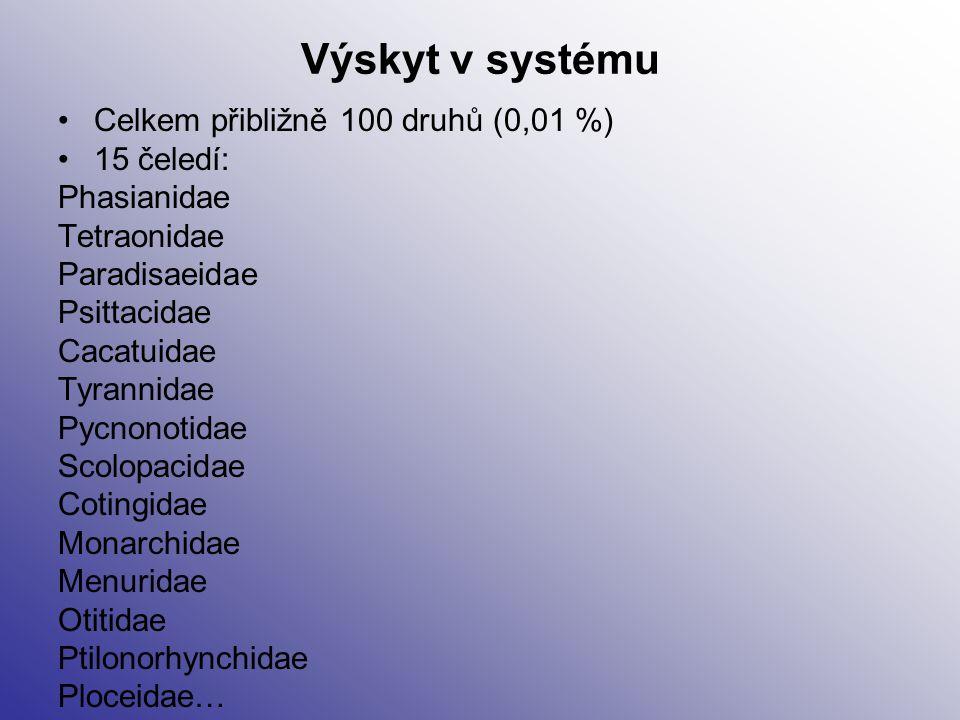 Výskyt v systému Celkem přibližně 100 druhů (0,01 %) 15 čeledí: Phasianidae Tetraonidae Paradisaeidae Psittacidae Cacatuidae Tyrannidae Pycnonotidae S
