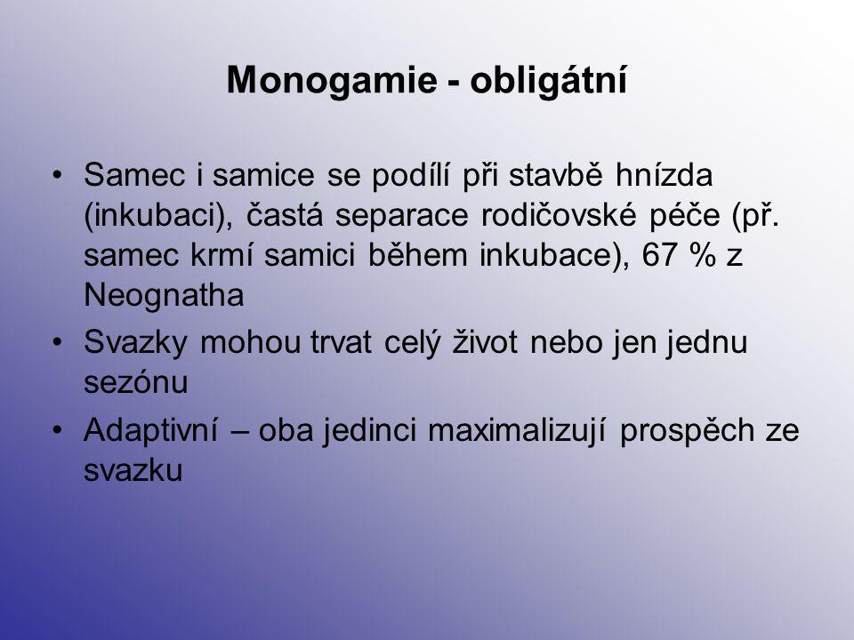 Monogamie - obligátní Samec i samice se podílí při stavbě hnízda (inkubaci), častá separace rodičovské péče (př. samec krmí samici během inkubace), 67