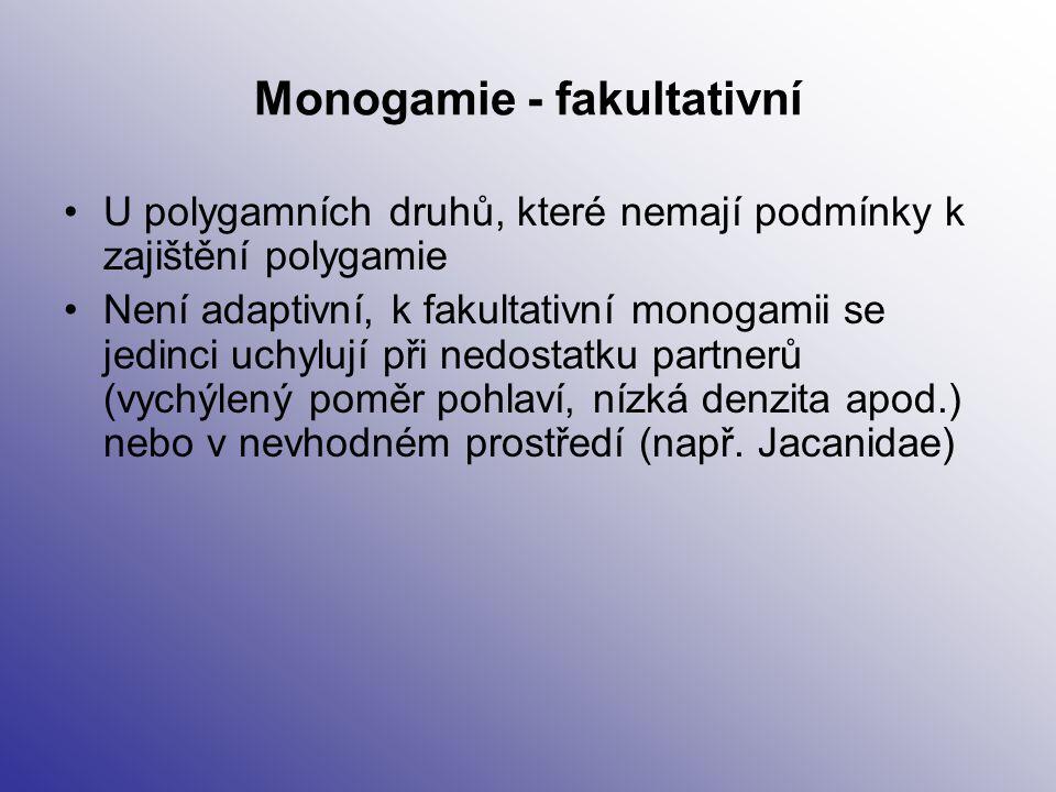 Monogamie - fakultativní U polygamních druhů, které nemají podmínky k zajištění polygamie Není adaptivní, k fakultativní monogamii se jedinci uchylují