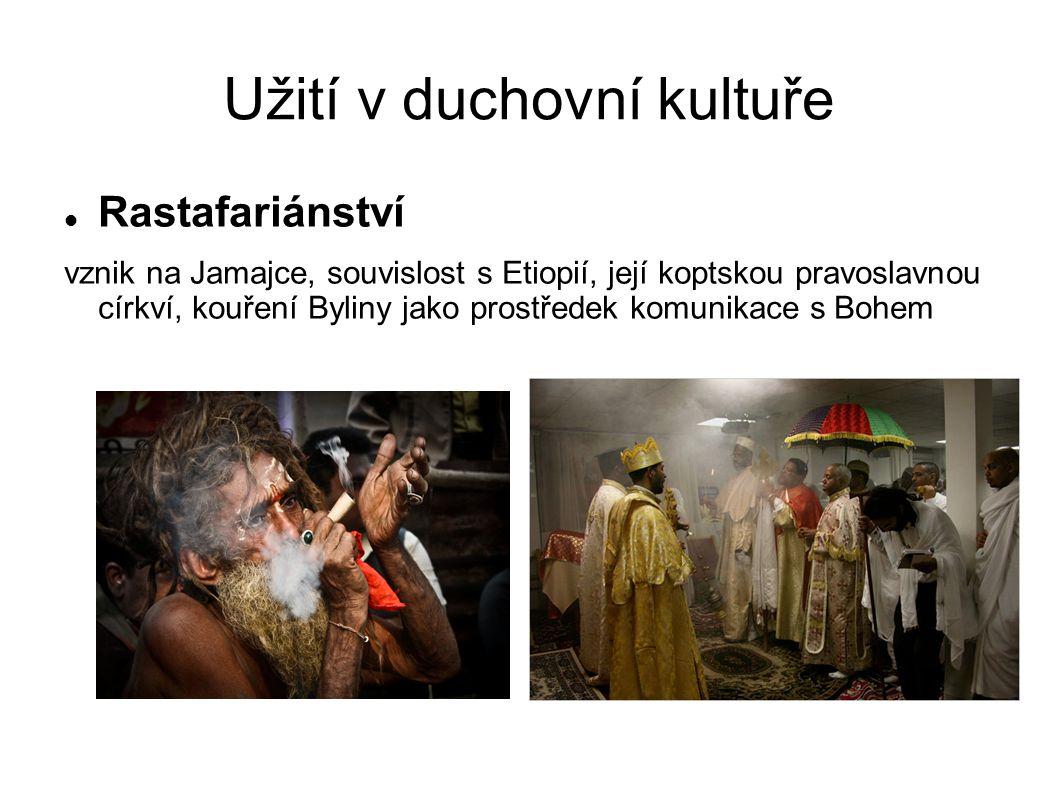 Užití v duchovní kultuře Rastafariánství vznik na Jamajce, souvislost s Etiopií, její koptskou pravoslavnou církví, kouření Byliny jako prostředek komunikace s Bohem