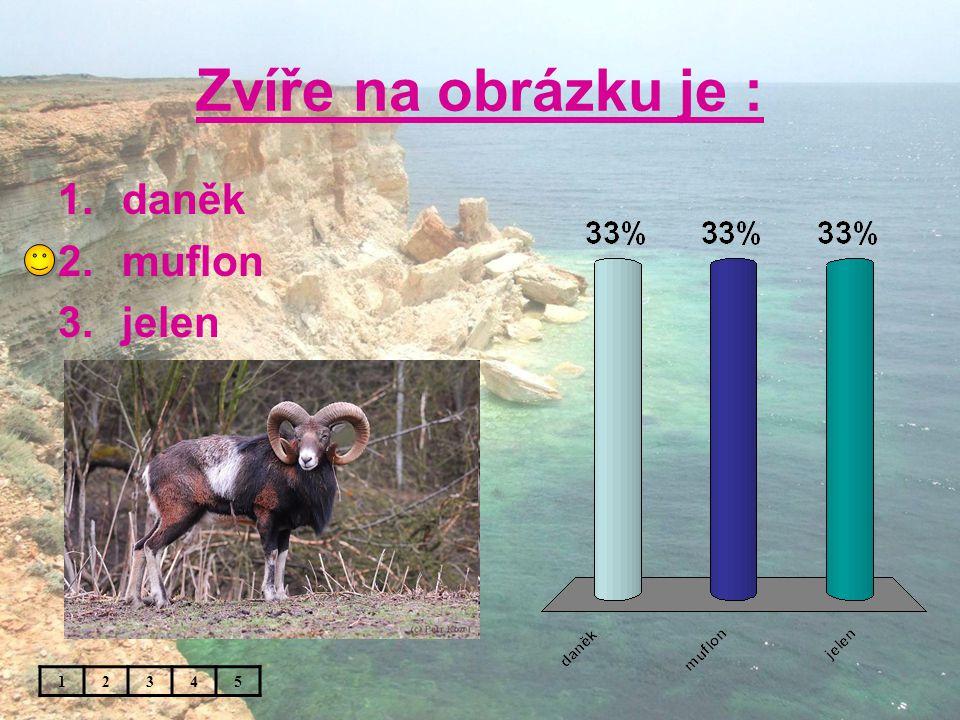 Zvíře na obrázku je : 1.daněk 2.muflon 3.jelen 12345
