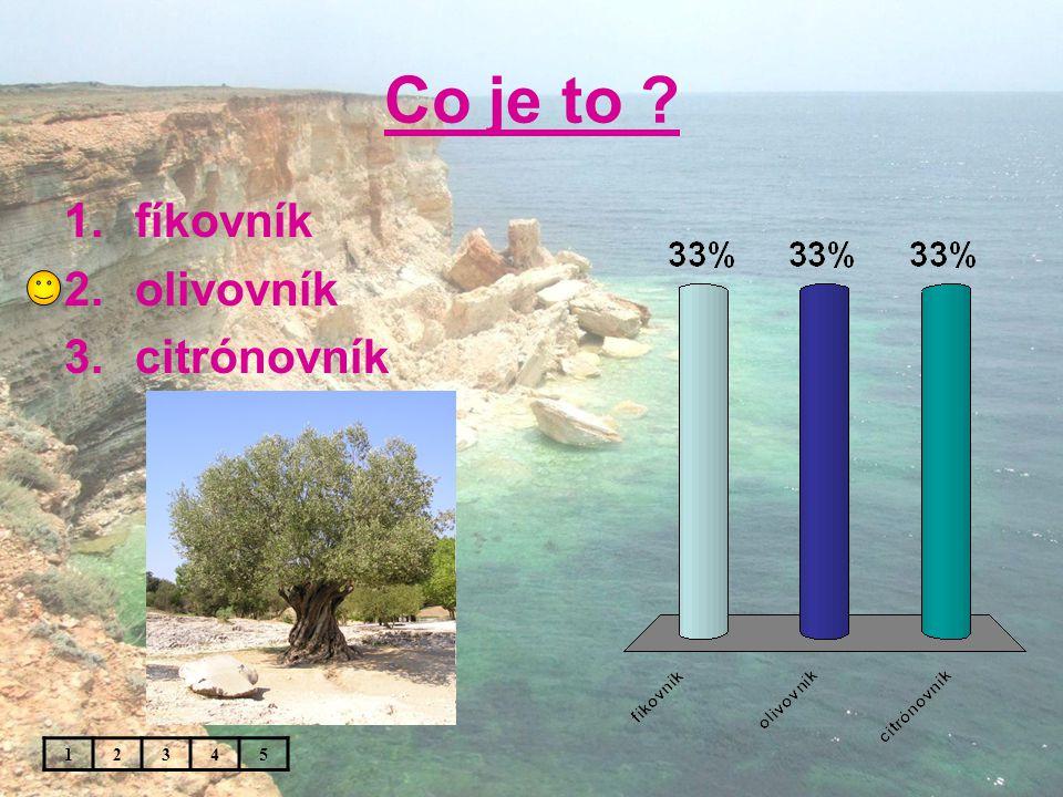 Co je to 1.fíkovník 2.olivovník 3.citrónovník 12345