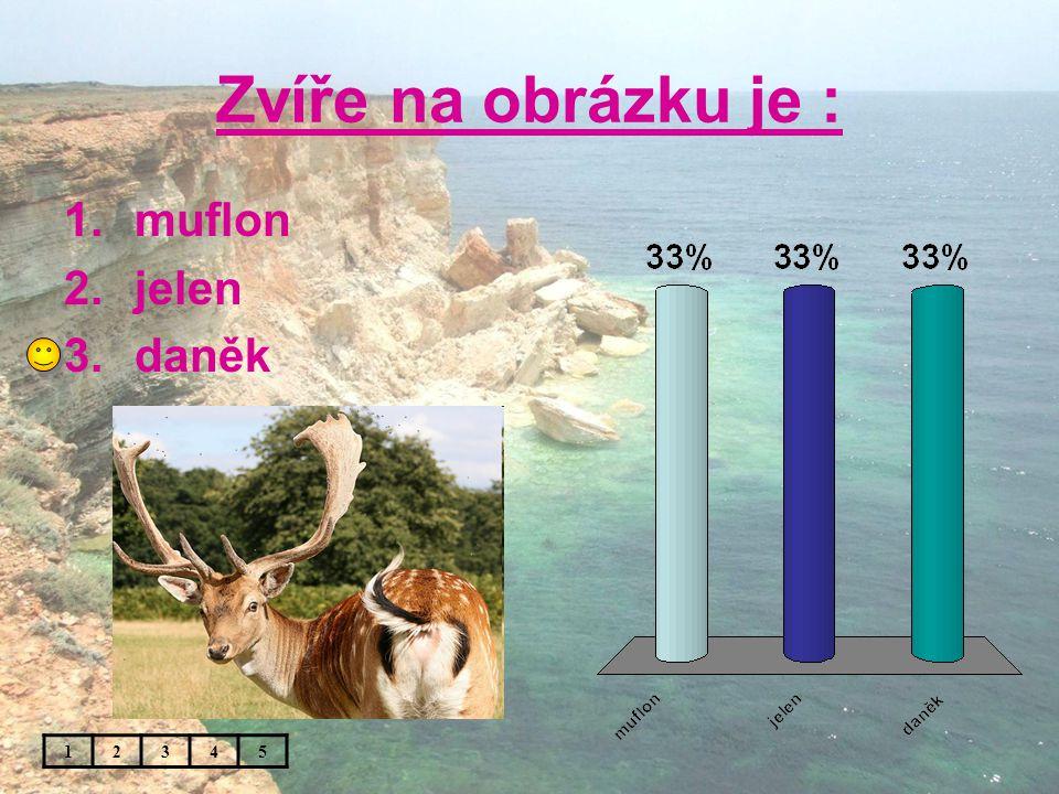 Zvíře na obrázku je : 12345 1.muflon 2.jelen 3.daněk