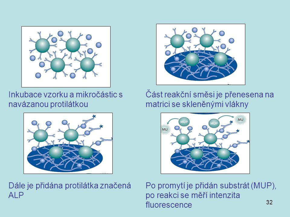 32 Inkubace vzorku a mikročástic s navázanou protilátkou Část reakční směsi je přenesena na matrici se skleněnými vlákny Dále je přidána protilátka zn