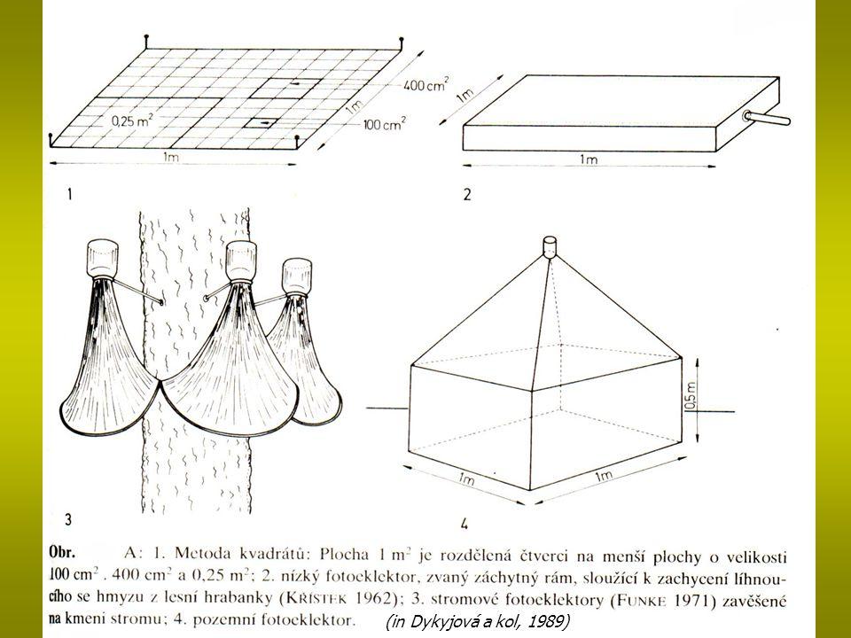 (in Dykyjová a kol, 1989)