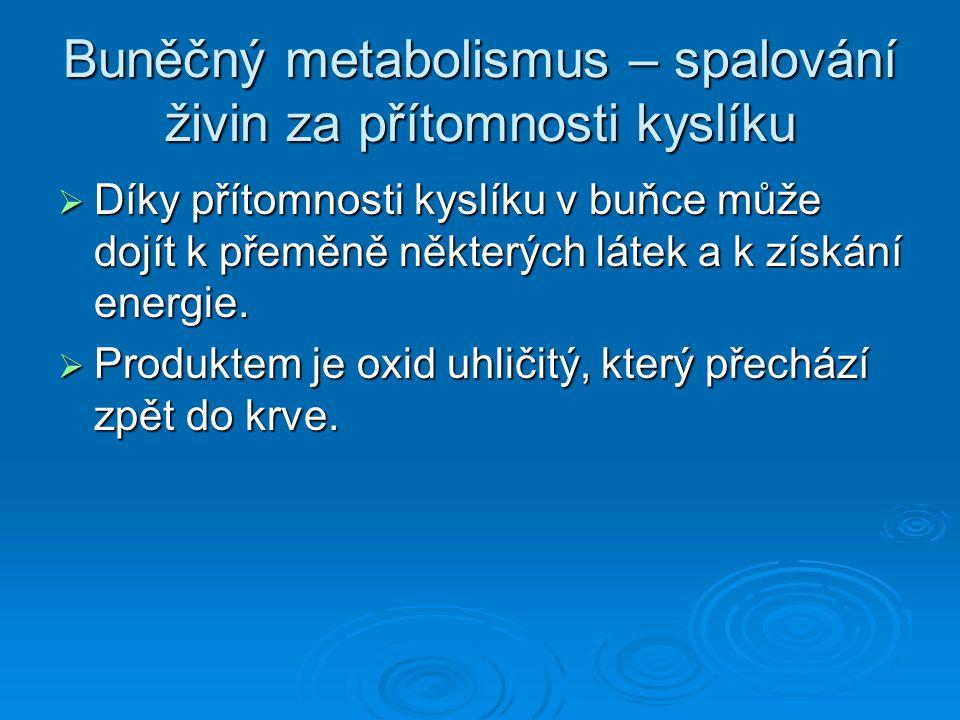 Buněčný metabolismus – spalování živin za přítomnosti kyslíku  Díky přítomnosti kyslíku v buňce může dojít k přeměně některých látek a k získání ener