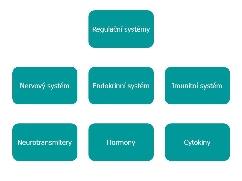 Regulační systémy Nervový systémEndokrinní systémImunitní systém CytokinyHormonyNeurotransmitery