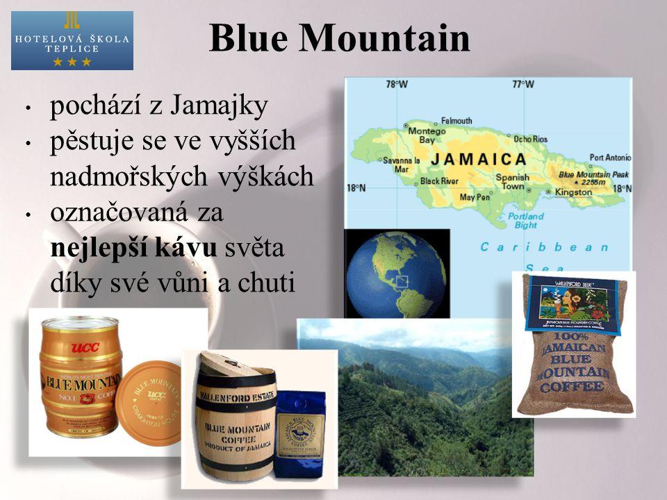 Blue Mountain pochází z Jamajky pěstuje se ve vyšších nadmořských výškách označovaná za nejlepší kávu světa díky své vůni a chuti