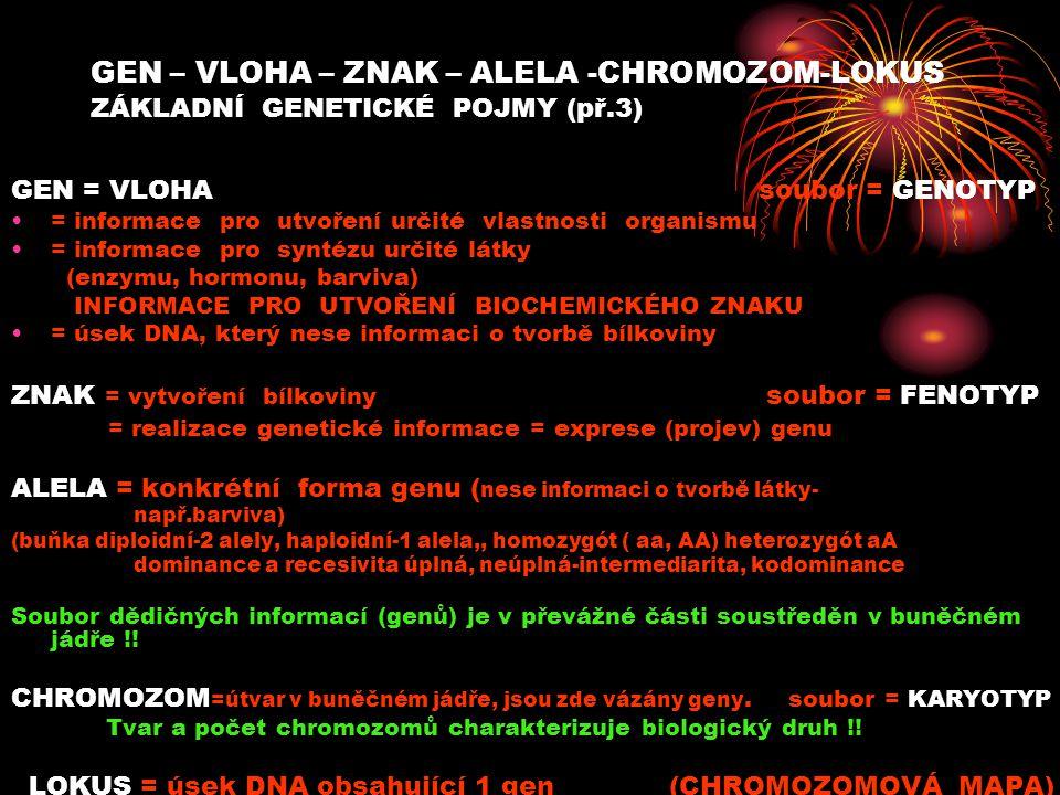 GEN – VLOHA – ZNAK – ALELA -CHROMOZOM-LOKUS ZÁKLADNÍ GENETICKÉ POJMY (př.3) GEN = VLOHA soubor = GENOTYP = informace pro utvoření určité vlastnosti organismu = informace pro syntézu určité látky (enzymu, hormonu, barviva) INFORMACE PRO UTVOŘENÍ BIOCHEMICKÉHO ZNAKU = úsek DNA, který nese informaci o tvorbě bílkoviny ZNAK = vytvoření bílkoviny soubor = FENOTYP = realizace genetické informace = exprese (projev) genu ALELA = konkrétní forma genu ( nese informaci o tvorbě látky- např.barviva) (buňka diploidní-2 alely, haploidní-1 alela,, homozygót ( aa, AA) heterozygót aA dominance a recesivita úplná, neúplná-intermediarita, kodominance Soubor dědičných informací (genů) je v převážné části soustředěn v buněčném jádře !.